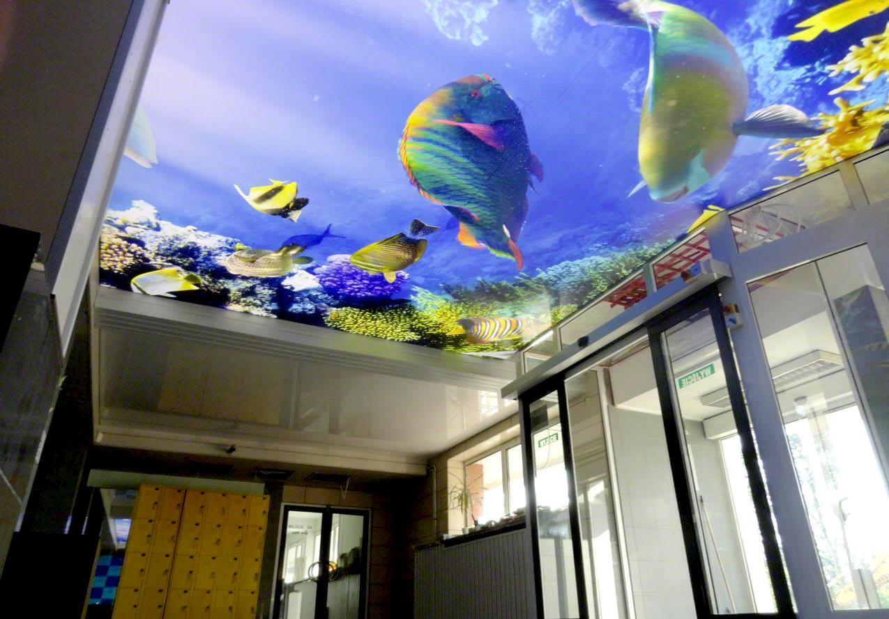 натяжной-потолок-аквариум